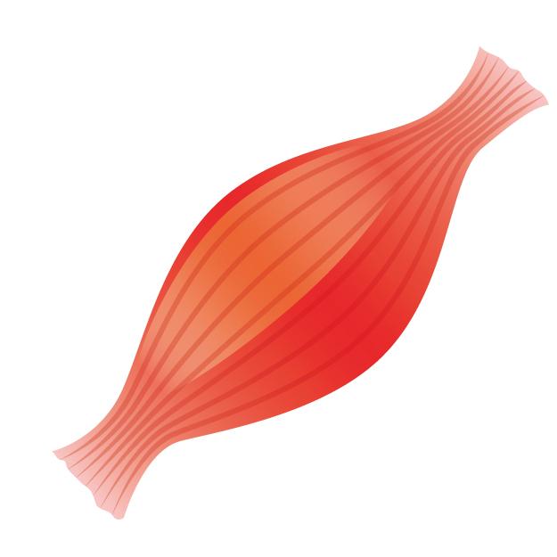 整体 筋膜リリース